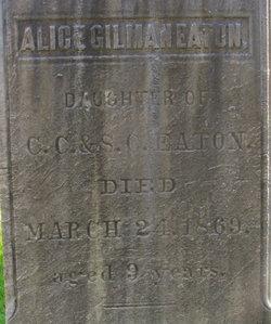 Alice Gilman Eaton