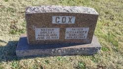 Alexander B Cox