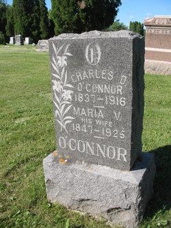 Maria V <I>Rector</I> O'Connor