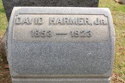 David Harmer, IV
