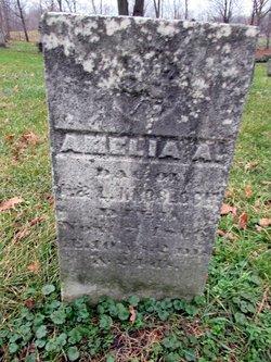 Amelia Knobloch