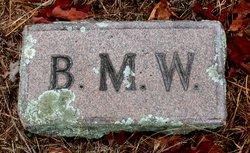 Benjamin M Wyatt