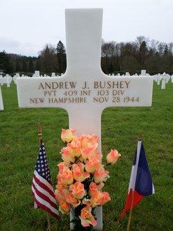 Pvt Andrew Joseph Bushey