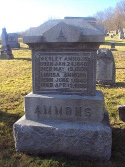 Luvisa <I>Hibbs</I> Ammons