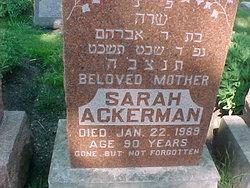 Sarah <I>Cantor</I> Ackerman