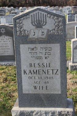 Bessie Kamenetz