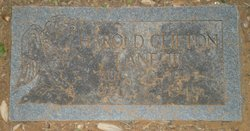Harold Clifton Lane, III