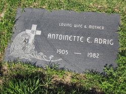 Antoinette E. <I>Dietzel</I> Adrig