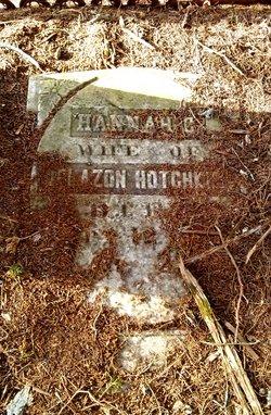 Hannah C Hotchkiss