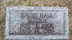 David Hall Sledge