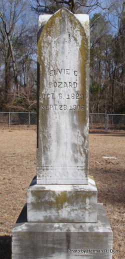 Elvie C. <I>Johnston</I> Bozard