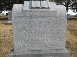 Lizzie C. <I>Hendricks</I> Perkey