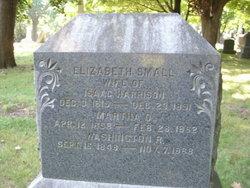 """Washington Ritter """"Rit"""" Harrison"""