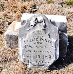 Mollie White