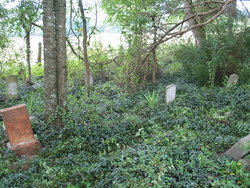 Delaney Cemetery