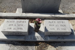 Remer Barnes
