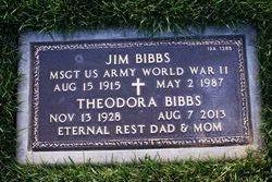 Jim Bibbs