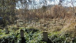 Wells Bottom Cemetery