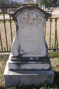 Albert Gallatin Foster