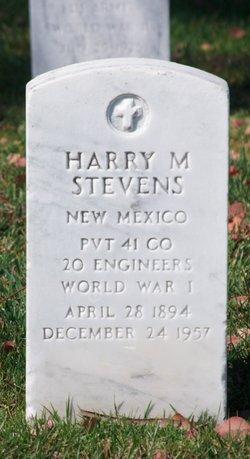 Harry M Stevens