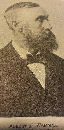 Albert Erasmus Wellman