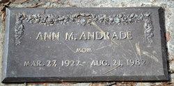 Ann M Andrade