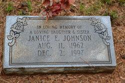 Janice E Johnson