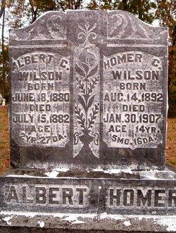 Homer G Wilson