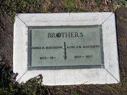 Robert J. W. Matthews