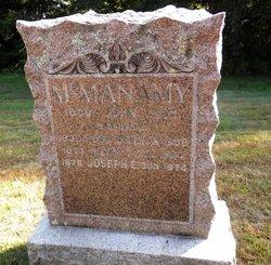 Henry Thomas McManamy