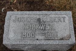 Joseph Albert Kurzweil