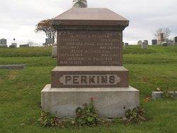 Albert B. Perkins