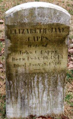 Elizabeth Jane <I>Lee</I> Capps