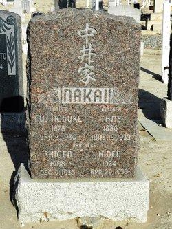 Tane <I>Furube</I> Nakai
