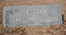 Thomas S Briggs