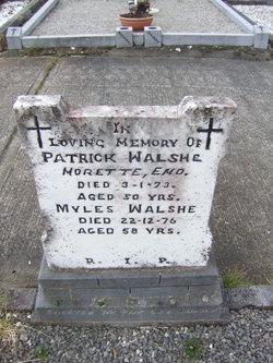 Myles Walshe