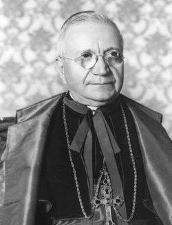 Cardinal Amleto Giovanni Cicognani