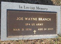Joe Wayne Branch