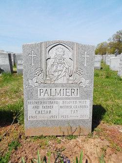 Caesar Palmieri