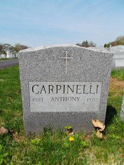 Anthony Carpinelli