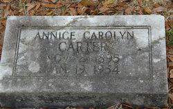 Annice Carolynn Carter