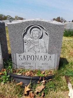 Rose Saponara