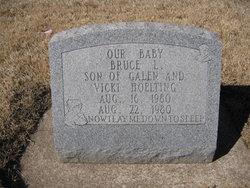 Bruce L Hoelting