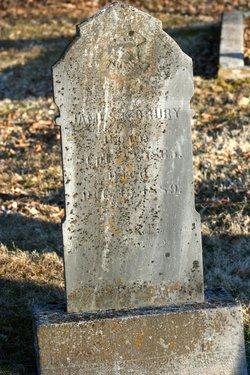 James E. Drury