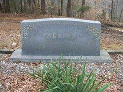 """George Washington """"G. W."""" Adkins"""