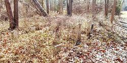 Overman-Price Family Cemetery