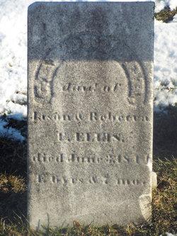 Gertrude Ellis