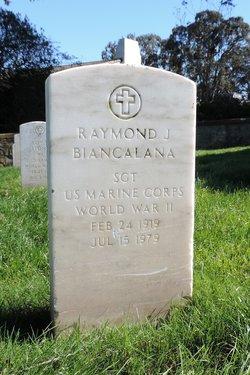 Sgt Raymond J Biancalana