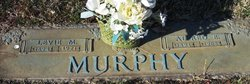 Alfred E. Murphy