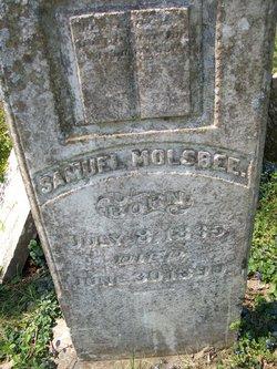 Samuel P Molsbee
